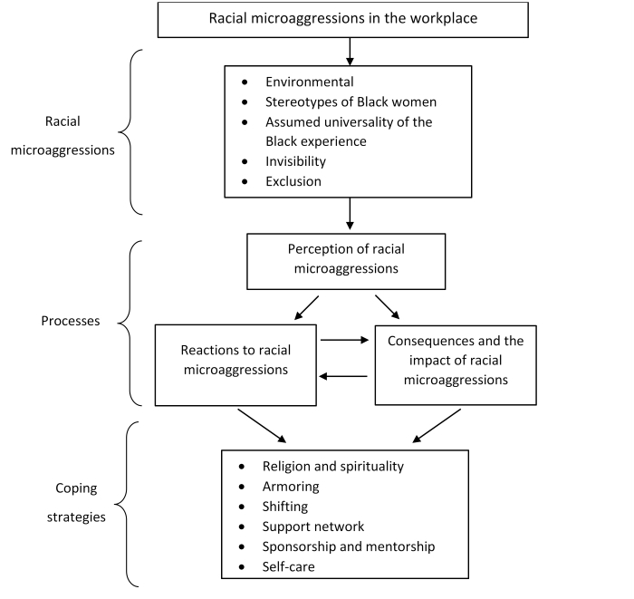Sample flowchart describing racial microaggressions in the workplace, including examples of racial microaggressions, processes, and coping strategies.